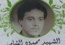 الشهيد محمود الشامي – نضال حمد